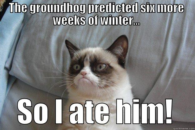Groundhog Day Meme 3 groundhog day meme 3 fat harolds beach club,Funny Groundhog Meme