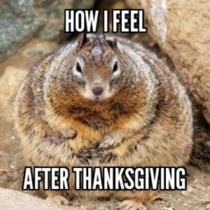 thanksgiving fat